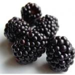 Black Raspberry Seed