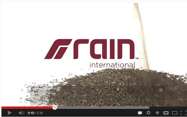 rain international_1